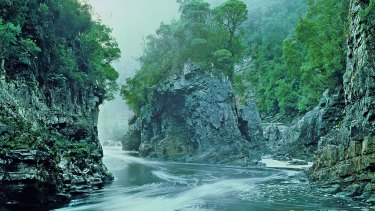 The image that helped save a river: 'Morning Mist' at Rock Island Bend on the Franklin River in Tasmania.