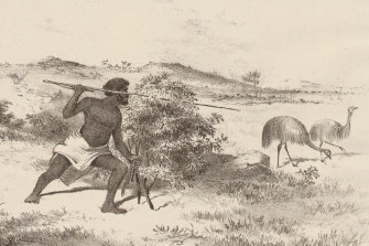A 19th-century depiction of an Indigenous man hunting emus.