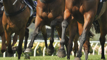 The track at Coffs Harbour has been rated a Good 4.