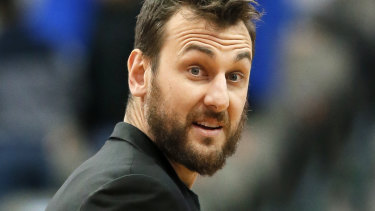 NBA basketballer and Essendon fan Andrew Bogut