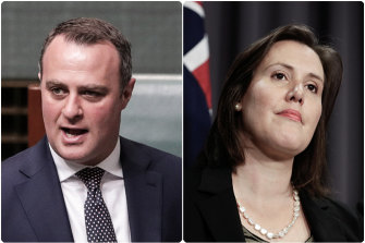 Under pressure: Tim Wilson and Kelly O'Dwyer.