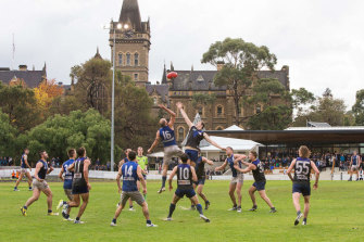 One of the Victorian Amateur Football Association's most powerful clubs says it will have to boycott the 2020 season if the association doesn't make the decision for them.