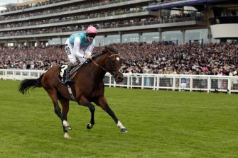 Frankel carries the Juddmonte Farms colours to victory in the Queen Anne Stakes  at Royal Ascot.