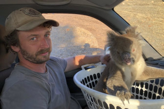 The arborist and wildlife rescuer with one of the Kangaroo Island koalas.