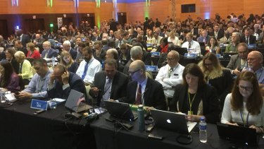 The floor of the International Whaling Commission's annual meeting in Florianopolis, Brazil.