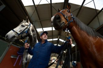 Mark Kavanagh with retired racehorses Forward Lane and Maldivian.