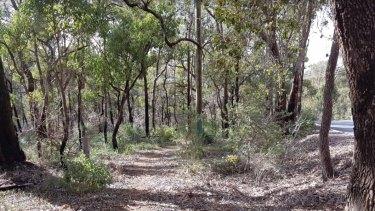 A section of the Bibbulman Track near Paulls Valley.
