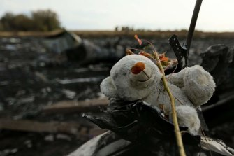 A teddy bear amongst the debris of flight MH17 at the crash site in the fields outside the village of Grabovka in the self proclaimed Donetsk Republic, Ukraine.