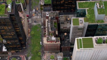 What might our cities look like if we greened the tops of buildings?