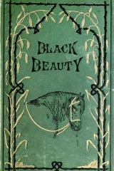 The 1877 first edition of <i>Black Beauty</i> by Anna Sewell.