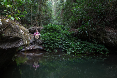 Queensland's Scenic Rim is a stunning example of a wilderness backyard for city dwellers.