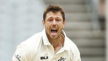 James Pattinson is back in the Australian squad.