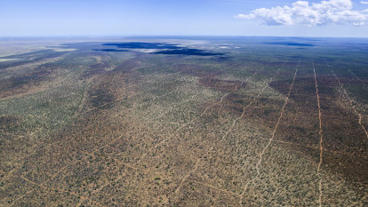 'The distance from Perth to London': How a gas company cleared the Kimberley