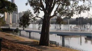 Design images lodged as part of a development application for a riverwalk in Brisbane City.