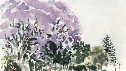 Sydney life: Adventures while painting jacarandas