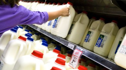 Why the days of ultra-cheap milk are - and should be - numbered