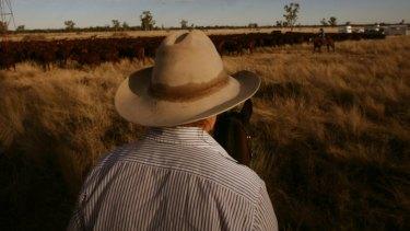 S Kidman's cattle empire.