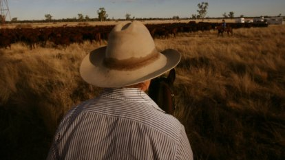 Australia's Cattle King knew how to make a buck out of a terrible climate
