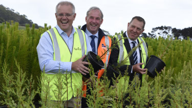 Australian Prime Minister Scott Morrison, Senator Richard Colbeck and Liberal candidate for Braddon Gavin Pearce pose for photographs during a visit to Forico Nursery in Somerset, Tasmania.