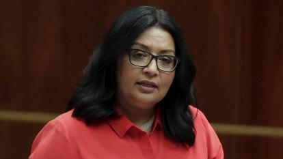 NSW elects five new senators alongside Greens' Mehreen Faruqi