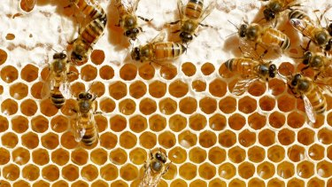 Home-made honey ... do your research.