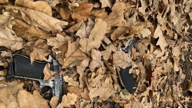 Guns found in Fawkner Park.