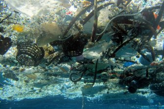 The NSW government is acting on dire warnings about the threat of plastics.