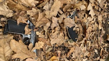 Guns found in Fawkner Park, South Yarra, after the shooting death of Daniel O'Shea.