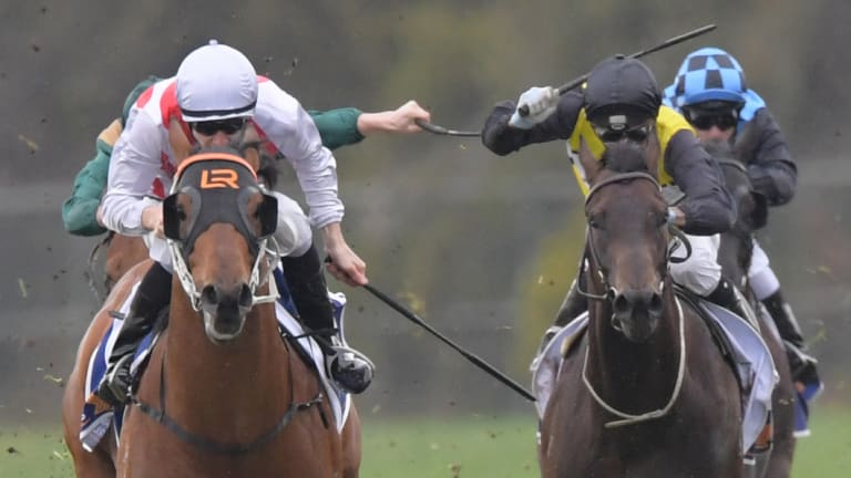 Off the map: Graff shoots clear to win the San Domenico Stakes.