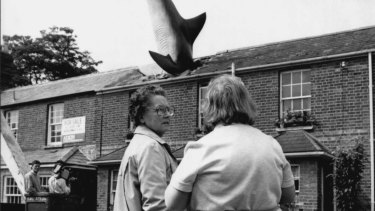 Cinema boss Bill Heine hired a crane to lower a 25ft model of a shark on the roof of his little terraced house. Bill got sculptor John Buckley to make the glass-firba fish as a symbol of peace on the anniversary of the Nagasaki a-bomb in 1986.