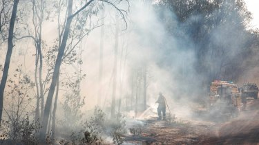 The Pechey bushfire in the Toowoomba region where there are fears at least five homes have been lost.