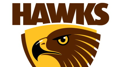 Strong Hawks on track for Dingley relocation by end of 2022