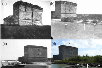 The back of Fort Matanzas taken in: (a) 1900-1915, (b) 1934, (c) 1981, and (d) 2018. Black mangroves (Avicennia germanins) are identified with white arrows on (b) and (d)