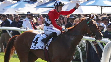 Overlooked gem: Trap For Fools ridden by jockey John Allen returns to the mounting yard after winning the Mackinnon Stakes