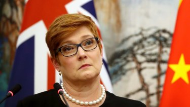 Foreign Minister Marise Payne says a new National Foundation for Australia-China Relations will help boost relations with China.