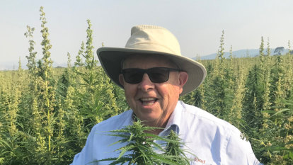 How rich-lister Barry Lambert became a cannabis mogul in a bid to save his granddaughter