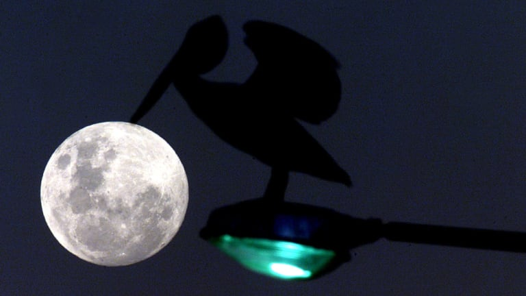 Erik Hauri helped usher in a new era in our understanding of the moon.