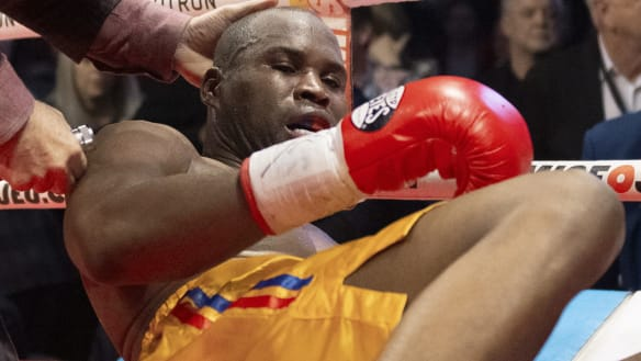 boxing news live coverage results the sydney morning herald