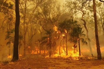 Volunteer firefighter Chloe Hines captured eerie images of blazes in Carnarvon National Park during the 2018 fires.