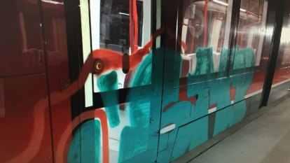 Man to face charges after Canberra tram targeted in graffiti attack