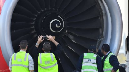 Australian planes hit more than 16,000 birds in the past 10 years