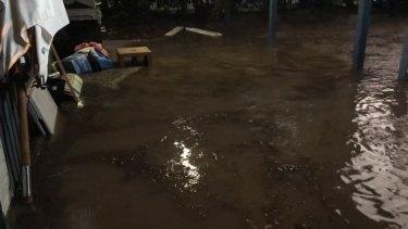 The flooded Yeerongpilly backyard.