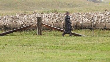 "Charles ""Charlie"" Coventry at Ermenegildo Zegna's Australian sheep station Achill Farm in NSW."