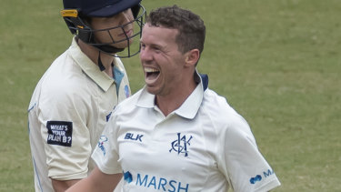 Peter Siddle celebrates a wicket for Victoria