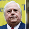 'Injury to his feelings': Details of Palmer's defamation suit against McGowan revealed