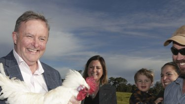 Opposition Leader Anthony Albanese had reason to crow after Labor held on to the seat of Eden-Monaro.