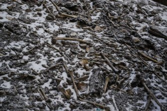 Bones in the snow at Roopkund Lake.
