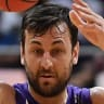 Happy homecoming for Bogut in Kings' Cup eve clash with United