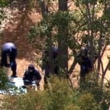 Murder probe underway after body found south-east of Perth