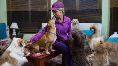 Hoda Sedghi Shamir breeds dogs and also looks after stray dogs and ones who need medical treatment in Tehran.